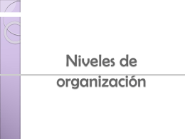 niveles de organizacion celular