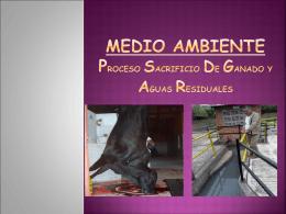 Diapositiva 1 - ingeambiental