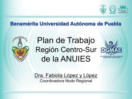 Plan de trabajo Region Centro