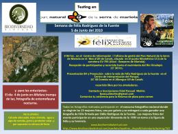 Testing en - Biodiversidad Virtual