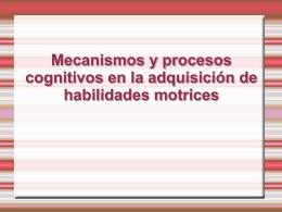 Mecanismos y procesos cognitivos en la adquisición de