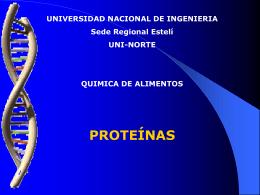 Clase de proteinas 1 - el Liceo Coloane en Castro