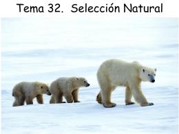 Tema32-w0910