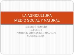 MEDIOS DE TRANSPORTE MEDIO SOCIAL Y NATURAL