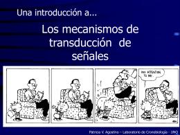 clase Transducción de señales - Laboratorio de Cronobiología