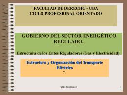 Estructura y Organización del Transporte Eléctrico