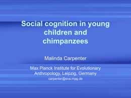 `Theory of mind`: Children`s and chimpanzees` understanding of