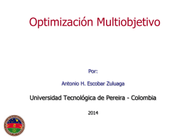 Optimización Multiobjetivo  - Universidad Tecnológica de Pereira