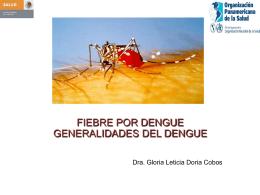 DENGUE, Generalidades