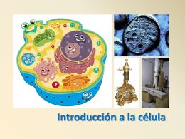 LA CELULA - Wikiaula de Biología 2º de Bachillerato