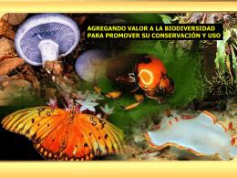 INBio: Estrategia de Conservación