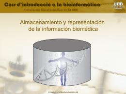 Formatos de presentación y almacenamiento de la información