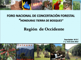 Región de Occidente - Agenda Forestal Hondureña