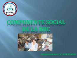 01 COMPONENTE SOCIAL RBC