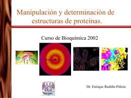 Manipulación y determinación de estructuras de proteínas.