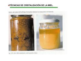 10.T.Lacristalización