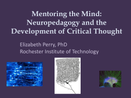 Mentoring the Mind-Neuropedagogy & Cognitive Skills Development