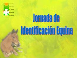 Jornada equinos - Ele Medios Comunicación