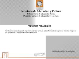 19.- principios - Secretaría de Educación y Cultura
