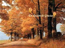 Accion_de_Gracias-23403 - Centro Concertado Juan XXIII Cartuja