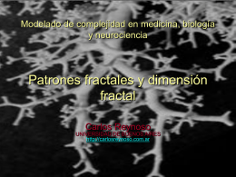 Modelado de complejidad en biología, medicina y
