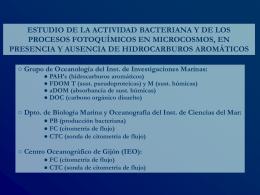 MAR-microcosmos