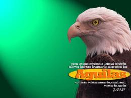 Las Aguilas - esperanza sin limites