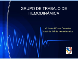 GRUPO DE TRABAJO DE HEMODINÁMICA : Memoria
