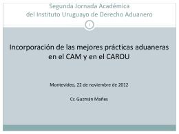 Presentación IUDA 2012 - Guzmán Mañes