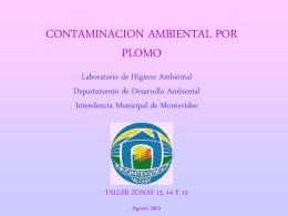 Contaminación Ambiental por Plomo - GAM