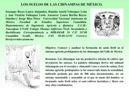 Los suelos de las Chinampas de México.