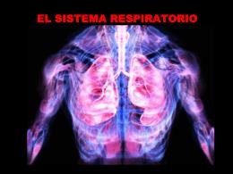 WebQuest_sistema_respiratorio2012