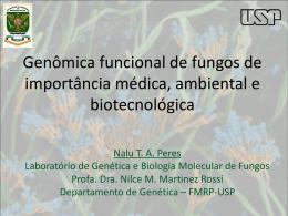 Genômica funcional de fungos de importância médica, ambiental e