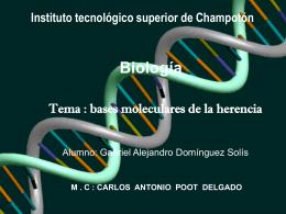 ADN - Instituto Tecnológico Superior de Champotón