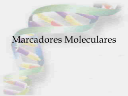 Clase 4 - Marcadores Moleculares 1