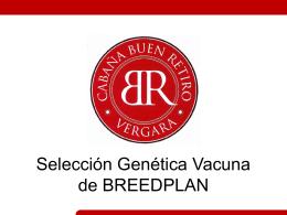 Peso vaca adulta - BREEDPLAN Angus Argentino