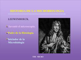 Historia de la Microbiología, Morfología Microbiana y