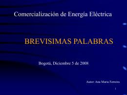Comercialización de Energía Eléctrica y Asignación de