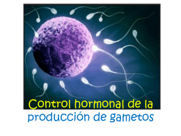 control_hormonal_de_gametos
