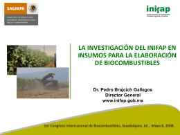 Pedro Brajcich - INIFAP Insumos