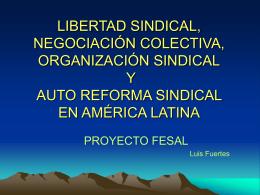 Libertad sindical, negociación colectiva, organización sindical y