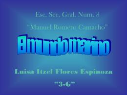 Diapositiva 1 - luisaespinoza