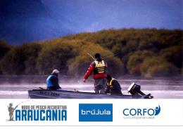 PPT - Nodo Pesca Araucanía