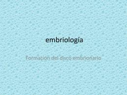 descargar ppt: embriología del Tejido conjuntivo