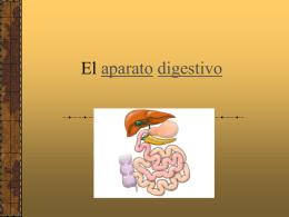 El aparato digestivo - ies picos de urbión