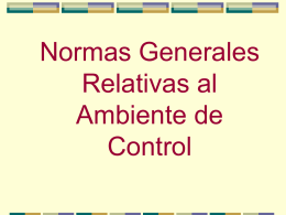 Manual de Control Interno-Cap. 2
