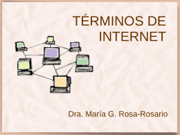 TÉRMINOS DE INTERNET