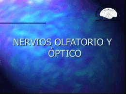 Olfatorio - eTableros