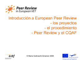Informe Peer Review