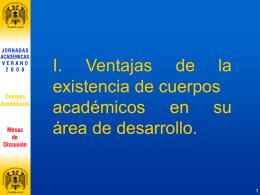 Megasíntesis de las Jornadas Académicas verano 2006